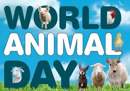 World Animal Day1 - World-Animal-Day1