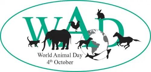 World Animal Day - Día Mundial de los Animales 2012