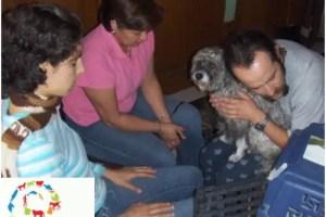 animales3 - Curso de comunicación telepática con animales en Madrid: 9 y 10 de octubre 2010