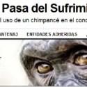 antena 3 sufimiento animal - Antena 3 pasa del sufrimiento animal y Jane Goodall y Eduardo Punset lo denuncian