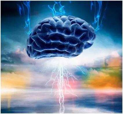 cerebro - cerebro conciencia