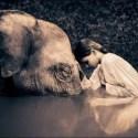 colbert5 - Animales y humanos: ¿qué estamos haciendo?