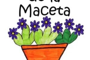 dia de la maceta - DÍA DE LA MACETA: los beneficios de las plantas en nuestra vida