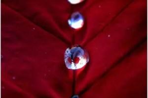 drop2 - El extraordinario poder de vivir en el día de hoy