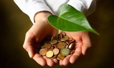 ecologia economia - Ecología y economía