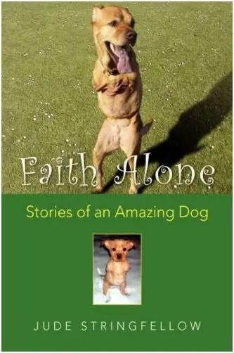 fe libro - fe-el perro libro