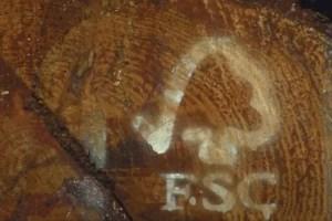 fsc - La certificación FSC garantiza la gestión responsable de los bosques