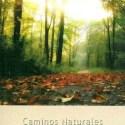 guiacaminos - Guía de los caminos naturales de España 2012: pdf gratuito
