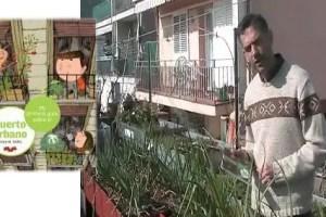 """huerto urbano - """"El huerto es un sitio de interacción entre la naturaleza y el hombre y su cultura"""". Entrevista a Josep Mª Vallès, especialista en huertos urbanos"""
