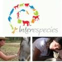 """interespecies - TELEPATÍA CON ANIMALES: ¿Cuántas veces no has dicho """"es que solo le falta hablar""""?"""