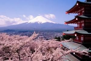 japon en primavera travelnautacom - Bienvenida primavera: Ostara 2011