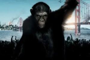 """origen planeta simios trailer poster espanol 1 765375 - """"Lo que los animales tienen que pasar por culpa de los humanos me rompe el corazón"""". Entrevista a la actriz Freida Pinto sobre le película El origen del planeta de los simios"""