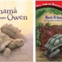 owen libros - La pareja del año 2009: el hipopótamo huérfano Owen y la tortuga Mzee