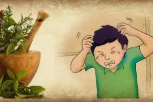 piojos - Eliminar los piojos de forma natural