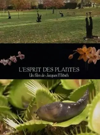 plantas1 - en la mente de las plantas