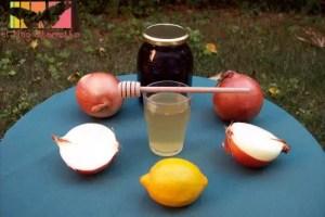 remedios gripe - Remedios naturales para la gripe a base de cebolla, miel y limón