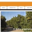 robiin - Robiin.com: naranjas valencianas directamente del campo a la mesa