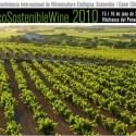 vino11 - EcoSostenibleWine 2010