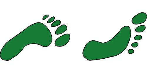 poco a poco mas ecologico - poco a poco mas ecologico