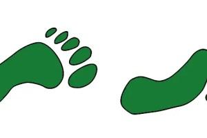 poco a poco mas ecologico - Poco a poco más ecológico. Los viernes de Ecología Cotidiana