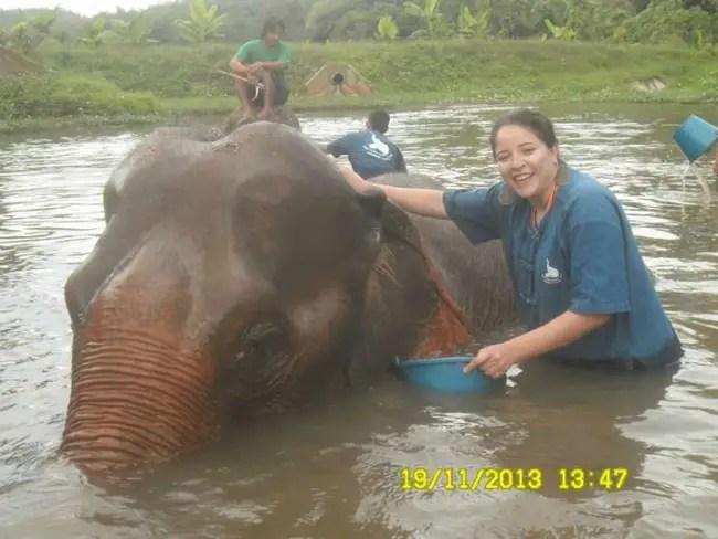 """viajero emprendedor elefante - """"Nos educaron para creer que tenemos que decidir entre tranquilidad y abundancia y eso es una mentira"""". Entrevista a Andrea Rojas de Viajero Emprendedor"""