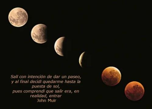 luna - luna