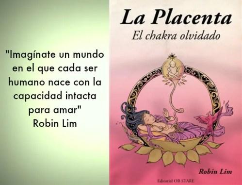 placenta - placenta