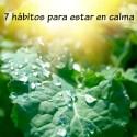 calma - Los 7 hábitos para estar en calma