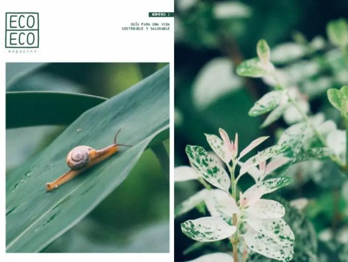 ECO ECO ECO - ECO ECO magazine: guía para una vida sostenible y saludable