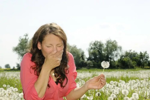 Alergia primaveral - young woman sneezes on a flower meadow