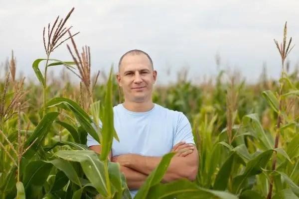 La influencia de la meteorología en la agricultura