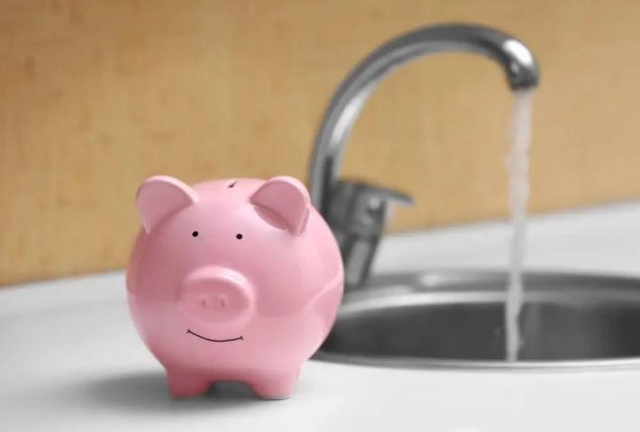 ahorrar agua cerdito - Consejos para ahorrar en la factura del agua