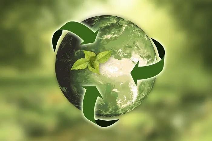 Mundo ecológico y sostenible - 5 pasos para un hogar más ecológico y sostenible