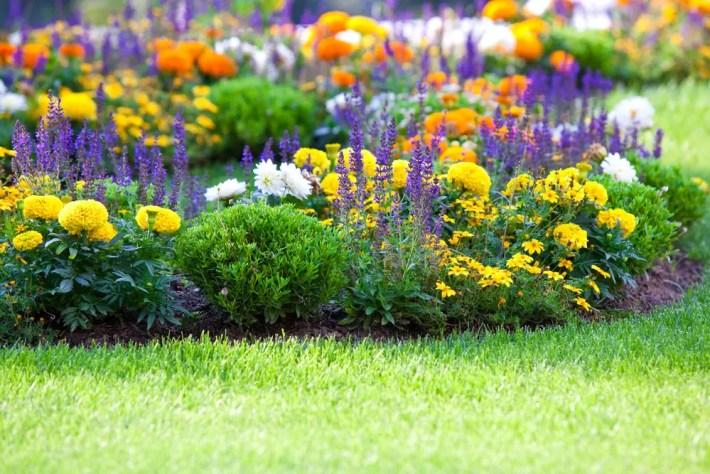 Feng Shui en el jardín - Feng Shui para el jardín, creando entornos con armonía