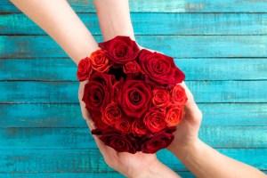 rosas - Los beneficios de las plantas y el placer de regalar flores