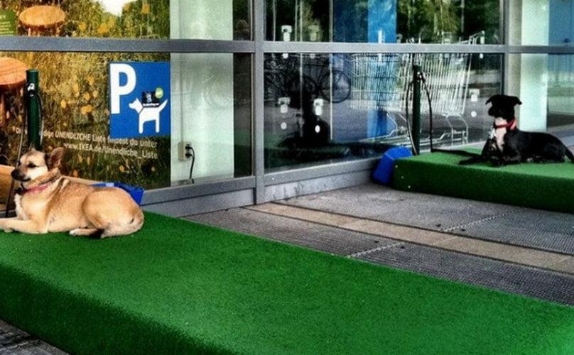Ikea Pet Friendly