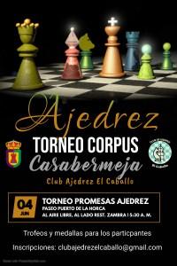 Veintidós jóvenes participantes en el Torneo de Ajedrez el Corpus de Casabermeja