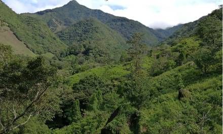 La Piedra de La India Vieja (Machu Pichu Boqueteño)