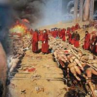 فيديو .. تعذيب المسلمين في بورما من قبل البوذيه ..