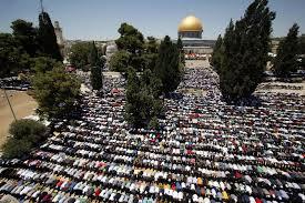 فلسطين المسلمة  .. فصائل    مؤتمر وارسو خدمة مجانية للمصالح الإسرائيلية