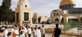 اخبار عاجلة .. مستوطنون يستأنفون اقتحام الأقصى والاحتلال يعتقل 4 مقدسيين