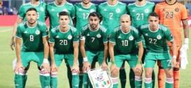 كان 2019.. الجزائر 2  كينيا 0  الجزائر تستهل حملتها الإفريقية بالنتصار ثمين على كينيا