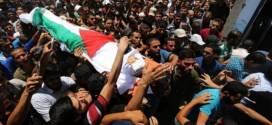 """""""إسرائيل"""" قتلت 16 طفلًا بغزة في النصف الأول من 2019"""