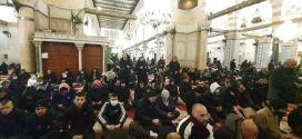 نداء الفجر العظيم .. حشود من المصلين يلبونها في المسجد الأقصى