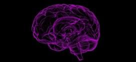 4 تغييرات بسيطة في نمط الحياة يمكنها المساعدة في درء مرض ألزهايمر