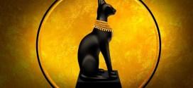 سر ولع المصريين القدماء بالقطط ؟