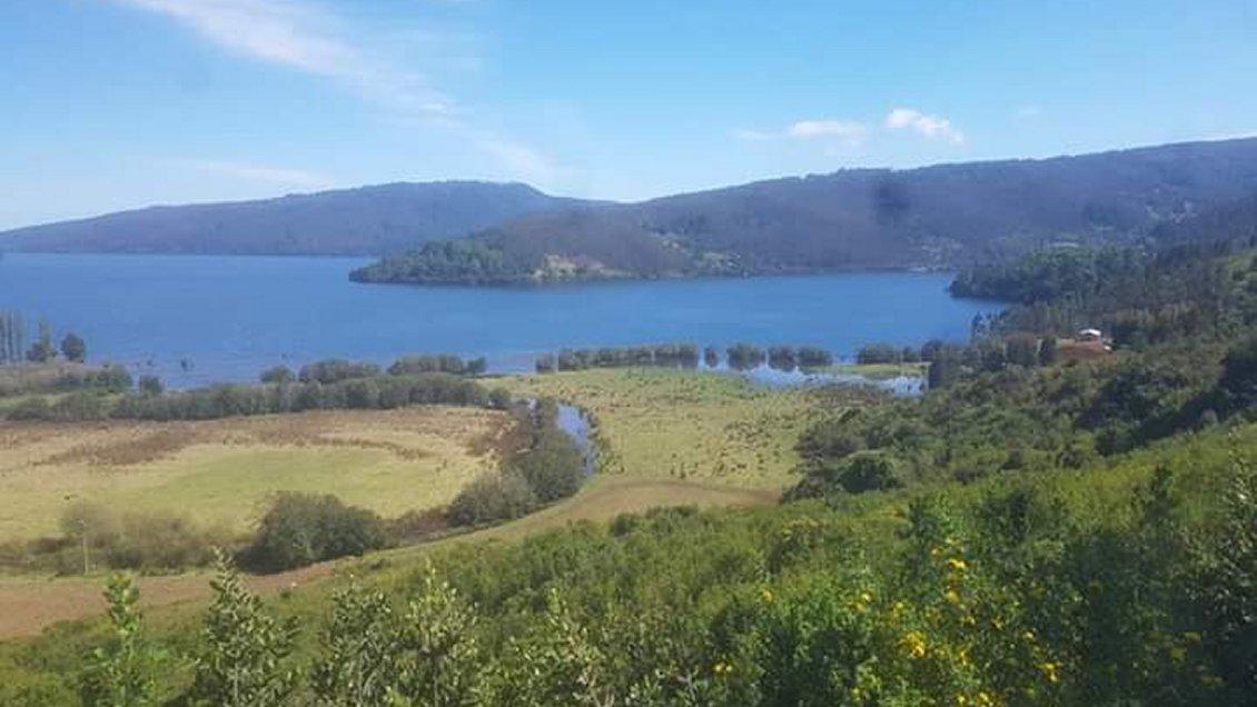 Grupo Angelini devolverá 97 hectáreas a comunidad mapuche Ignacio Huilipán de Contulmo