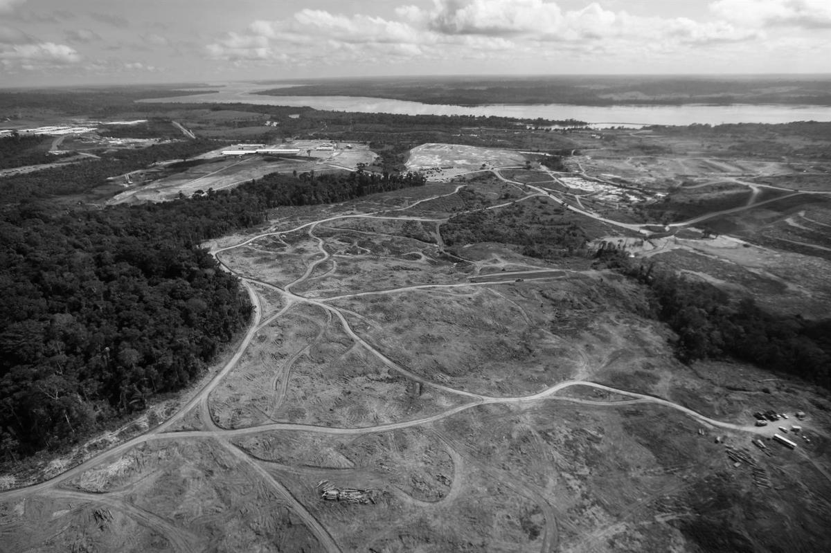 Efecto Bolsonaro: Cómo un presidente se las arregló para destruir el Amazonas brasileño en tiempo récord