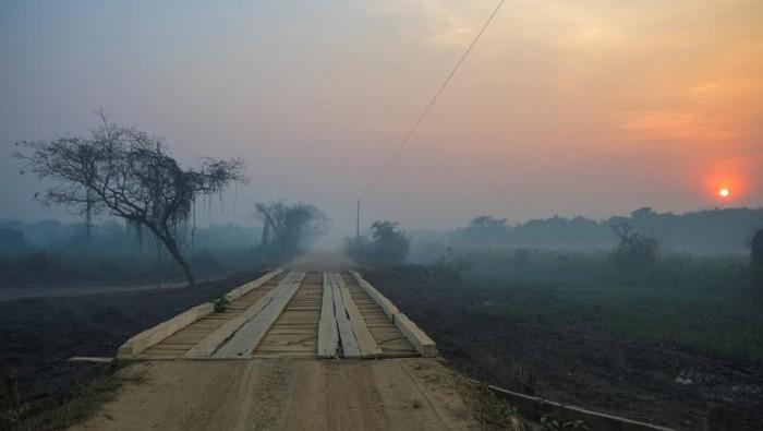 situación de emergencia pantanal estado