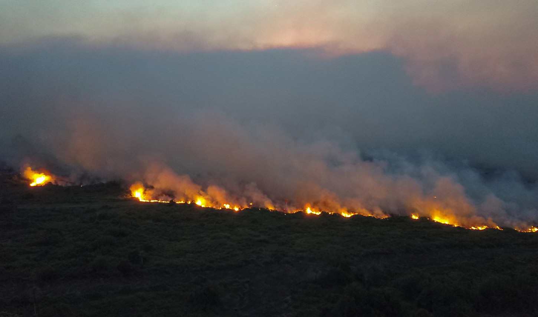 Incendios han consumido casi 33 mil kilómetros cuadrados en el Pantanal brasileño